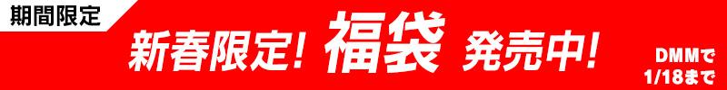 Miel/Norn 2019年 新春限定!福袋発売中!【2019年1月4日から2019年1月18日まで】
